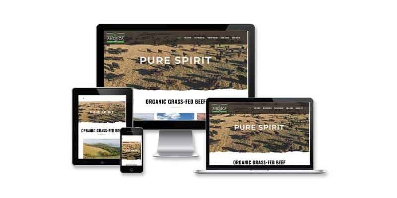 Pureland America Website Design