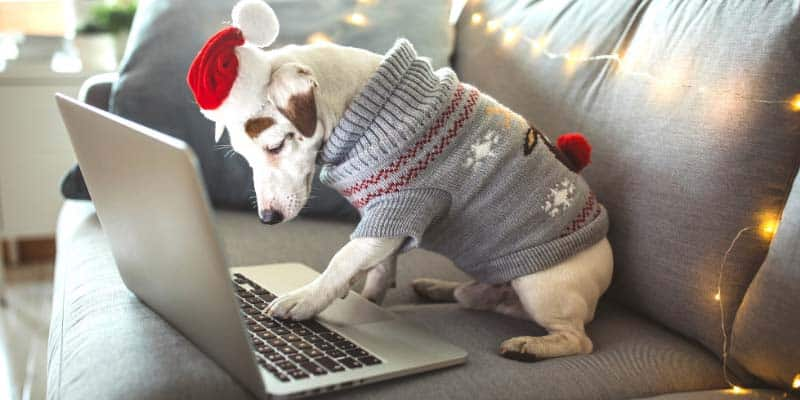is-your-website-holiday-ready---online-shopping