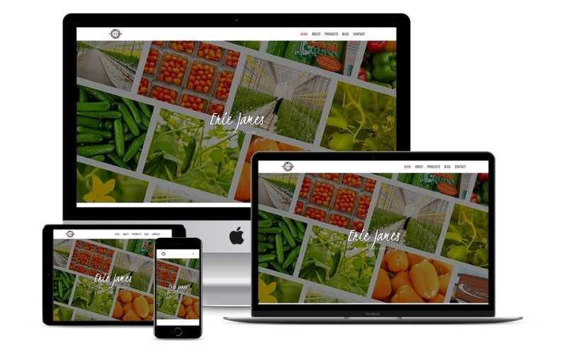 erie-james-responsive-website-design